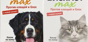 Kediler ve köpekler için Blohnet anlamına gelir: yorumlar ve kullanım talimatları