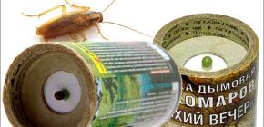 Dairede hamamböceği öldürmek için böcek öldürücü duman bombaları