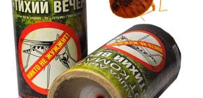 Odada böceklerin yok edilmesi için böcek öldürücü duman bombalarının kullanımı