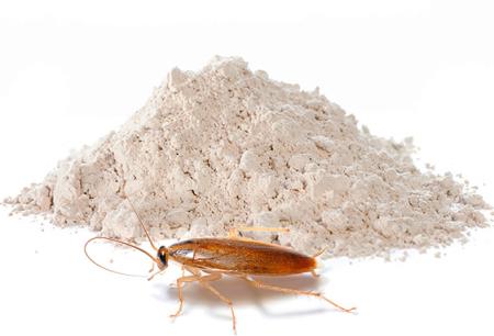 Hamamböceklerinin yok edilmesi için tozlar: Etkili anlamına gelir.